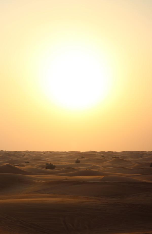 Brutal Sun